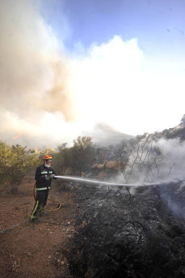 Arde por séptima vez el Barranco de Orfeo